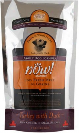 Petcurean Now! Adult Dry Dog Food 25 Lbs