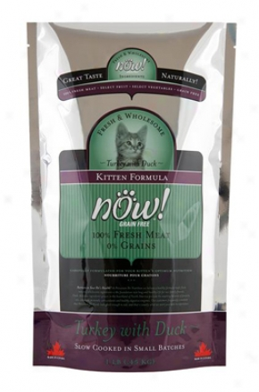 Petcurean Now! Kitten Dry Cat Food 3 Lbs