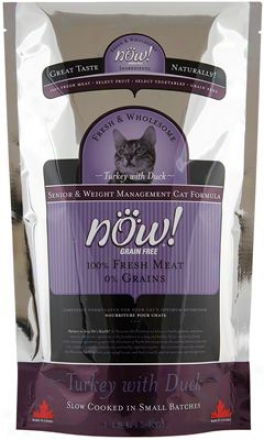 Petcurean Now! Senior Dry Cat Food 3 Lbs