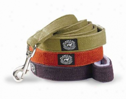 Planet Dog Hemp Dog Leash Apple Green