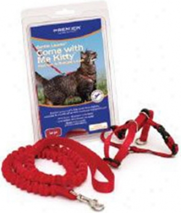 Premier Kitty Harness & Leash Red/lage