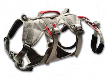 Ruff Wear Doubleback Dog Harness Medium (ss)