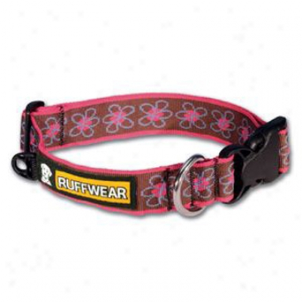 Ruff Suffer injury by use Hoopie Dog Collar Daisy Small (ss)