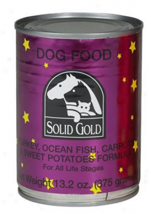Solid Gold Be able to Dog Lamb & Barley 13.2 Oz