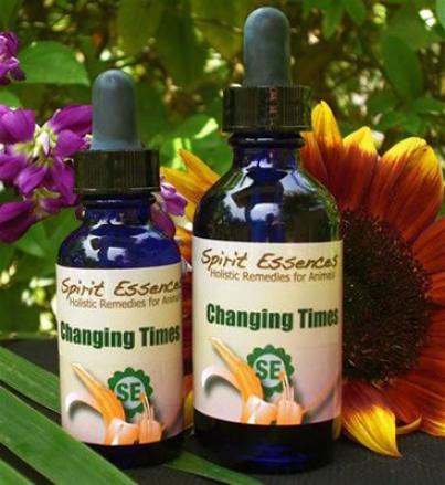 Spirit Essences Changing Times