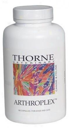 Thorne Research Arthroplex