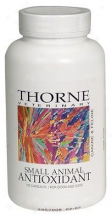 Thorne Research Small Animal Antioxidant