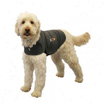 Thundershirt X-small