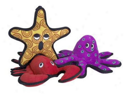Tuffy's Sea Creatures General Starfish