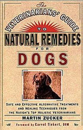 Veterinarians' Guide To Natural Remedoes For Dogs