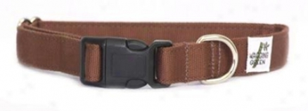 Wagging Green Buckle Collar Natural S (ss)