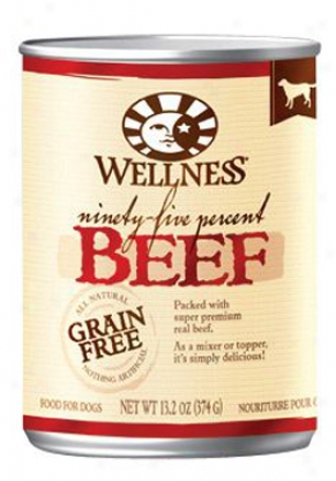 Wellness 95% Meat Canned Dog Salmon 13.2 Oz