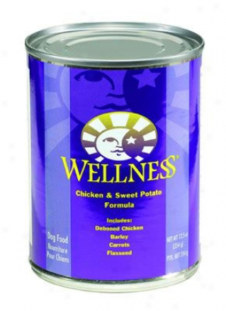 Wellness Canned Dog Lamb & Potato 12.5 Oz Case 12