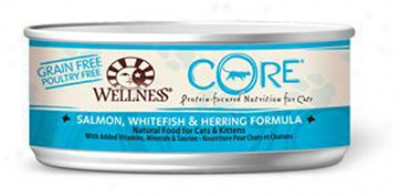 Wellness Grain-free Core Can Cat Salmon 5.5 Oz Question 24