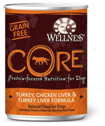 Wellness Grain-free Core Can Dog Turkey 12.5 Oz Case 12