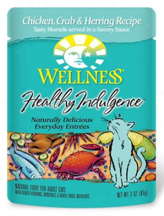 Wellness Pouch Cat Salmon &amp; Tuna 3 Oz 12 Pack