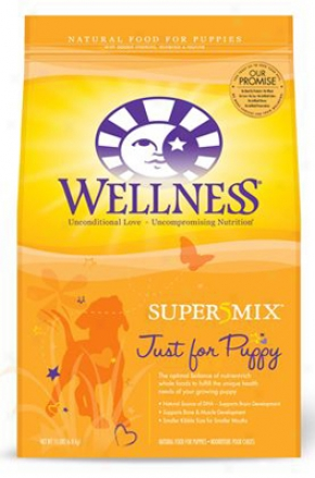 Wellness Super5mix Just For Puppy Dry Dog 6 Lbs