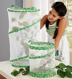"24"" Nrtted Butterfly Pavilion With 6-10 Caterpillars"