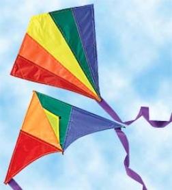 """16"""" Mini Rainbow Kites, Set Of 2"""