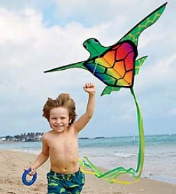 "35"" Durable Ripstop Nylon Flying Turtle Kite"