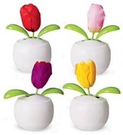 Be Happy Solar Powered Dancing Tulip