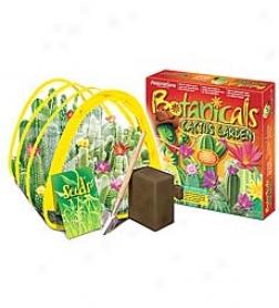Botanicals Cactus Garden Kit