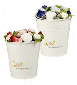 Bucket Bunch
