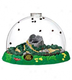 Ladybug Land Special Notice Habitat With Magnifying Port