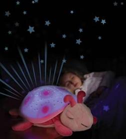 Pink Twilight Ladybug