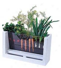 Rootvue Farm Garden Laboratory Kit