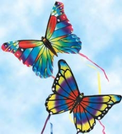 "Set Of Two 16"" Mini Butterfly Kites"