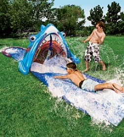 Slip-n-slide 3-d Inflatable Fraud Water Slide