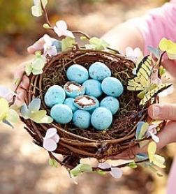 Spring Nest With Gourmet Eggs