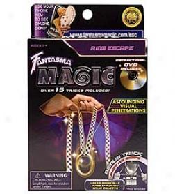 String Get away Trick& amp; Dvd
