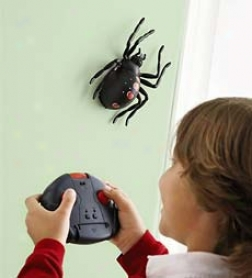 Web Runner Arachnid