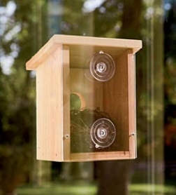 Wood Observation Birdhouse With Clear Aid