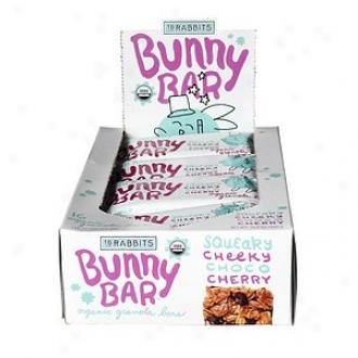 18 Rabbits Bunny Bar Squeaky Cheeky Choco Cherry Organic Granola Bars