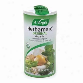 A. Vogel Herbamare Source Organized Herb Seasoning Salt