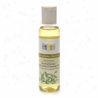 Aura Cacia Aromatherapy Bath, Body & Mwssage Oil, Eucalyptus Harvest