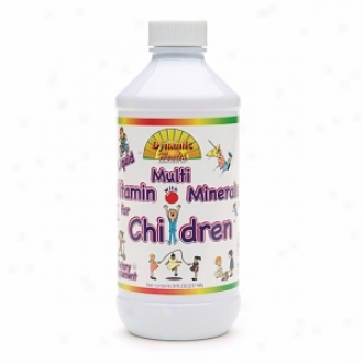 Dynamic Health Liquid Multivitamin With Minerals For Children