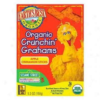 Earth's Best Sesame Street Organic Crunchin' Grahams Apple Cinnamon Sticks