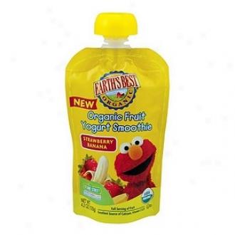 Earth's Best Sesame Street Organic Fruit Yogurt Smoothie Strawberry Banana