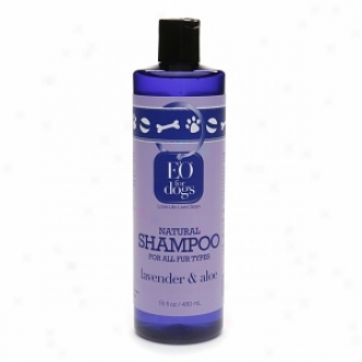 Eo Natural Dog Shampoo For All Fur Types, Lavender & Aloe