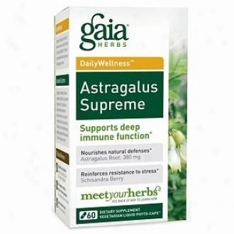 Gaia Herbs Astragalus Supreme, Liquid-filled Capsules