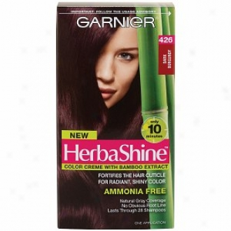 Garnier Herbashine Color Creme With Bamboo Extract, Dark Burgundy 426