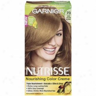 Garnier Nutrisse Of the same rank 3 Permanent Creme Haircolor, Dark Golden Blonde 73 (honey Dip)