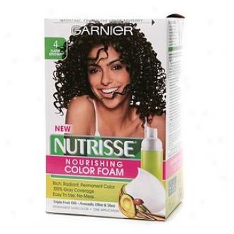 Garnier Nutrisse Nourishing Color Foam Permanent Haircolor, Dark Brown 4