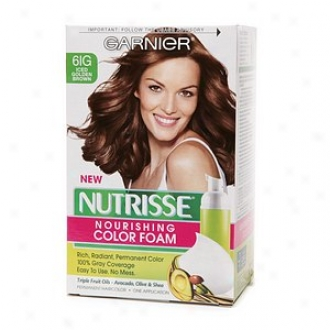 Garnier Nutrisse Nourishing Color Foam Permanent Haircolor, Iced Golden Brown 6ig