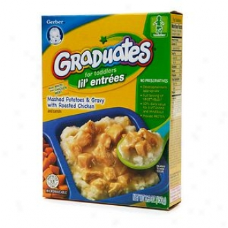 Gerber Graduates For Toddlera Lil' Entrees, Mashed Potatoes & Gravy With Roasted Chicken
