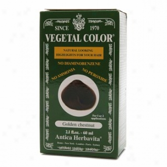Herbatint Vegetal Semi-permanent Her6al Haircolor Gel, Golden Chestnut